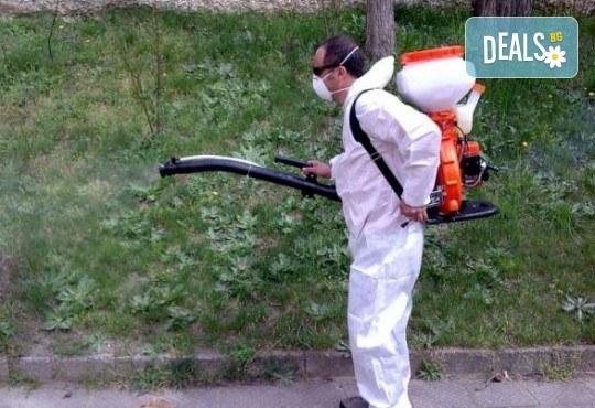 Основно почистване на дом или офис до 130 кв.м с безплатно еднократно третиране срещу вредители в обекта от Клийнпест 1 - Снимка 5