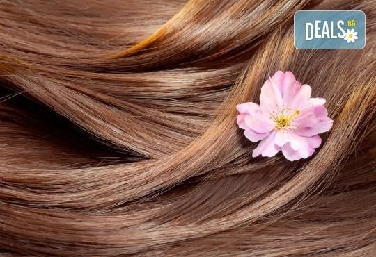 Регенерираща, подхранваща, анти-ейдж терапия за коса с Коластра и подстригване на връхчета от Gold Beauty! - Снимка 2