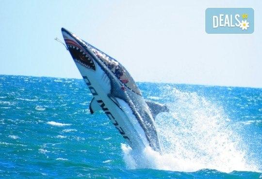Уникално и единствено по рода си 15-минутно гмуркане с най-новия атракцион Акула в Слънчев бряг - Снимка 2