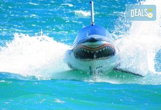 Уникално и единствено по рода си 15-минутно гмуркане с най-новия атракцион Акула в Слънчев бряг - Снимка 3