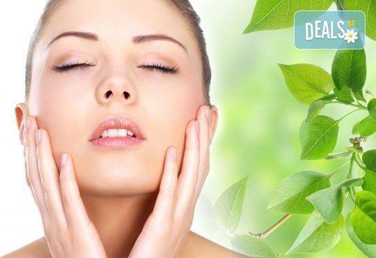 Почистване на лице плюс терапия против акне с био козметика на водещата немска фирма Dr. Spiller, Козметично студио Beauty - Снимка 1
