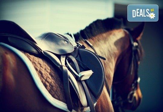 60 минути конна езда с водач на промоционална цена от конна база София – Юг, Драгалевци! - Снимка 1