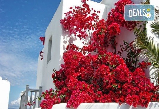 Септемрийски празници с екскурзия на о. Миконос - перлата на Гърция! 4 нощувки със закуски, транспорт, водач и посещение на Атина - Снимка 4