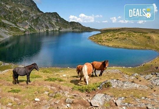Еднодневен тур до Седемте Рилски езера - съкровищата на Рила! Транспорт от София тур и придружаване от планински водач - Снимка 4