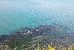 Специално за Варна и гостите на Варна! Еднодневна екскурзия до Бяла, нос Св. Атанас и разходка с лодка по река Камчия! Транспорт, водач и програма - Снимка