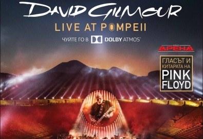 Само в Кино Арена, само през септември! Прожекция на концерта David Gilmour Live At Pompeii на 13 и 16 септември от 20ч., в Кино Арена в страната! - Снимка