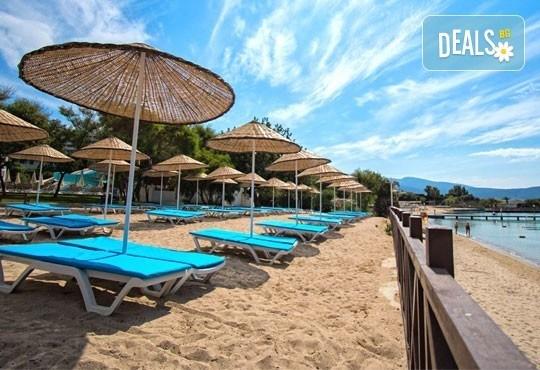 Почивка през септември в Дидим, Турция! 7 нощувки на база All Inclusive в Carpe Mare Beach Resort 4*, възможност за транспорт! - Снимка 5