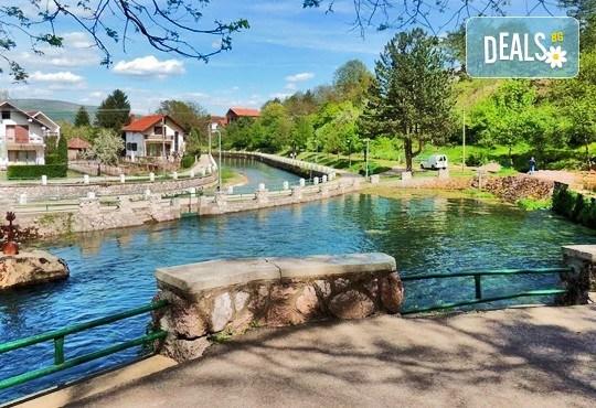 Еднодневна екскурзия до Пирот, Темски манастир и Бела Паланка за Фестивала на баницата на 12.08. от Комфорт Травел - Снимка 2