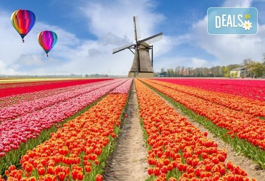 Екскурзия през есента до Амстердам, Холандия! 3 нощувки със закуски, самолетен билет, ръчен багаж и медицинска застраховка - Снимка 1