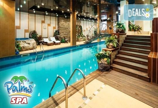Влезте във форма с Palms Spa към хотел Анел 5*! Басейн + джакузи, фитнес или комбинация със сауна или парна баня само до 31.10! - Снимка 1