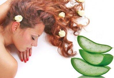 Релаксиращ или болкоуспокояващ масаж на цяло тяло или гръб с масла от макадамия, алое или цитрус в Chocolate Studio! - Снимка
