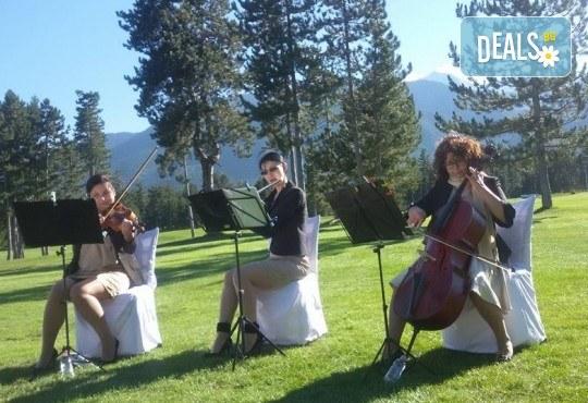 За децата! Концерт за малчугани и великани на 17.10. (вторник): представяне на музикален инструмент от MUSIC for You! - Снимка 16
