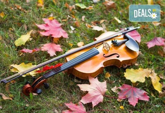 За децата! Концерт за малчугани и великани на 17.10. (вторник): представяне на музикален инструмент от MUSIC for You! - Снимка 3
