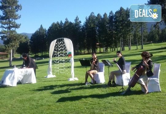 За Вашата сватба! Водене на изнесен ритуал по индивидуален сценарий на избрана локация от младоженците в рамките на София, от MUSIC for You! - Снимка 7