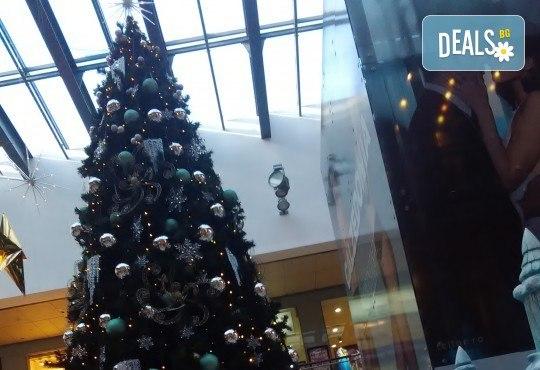 Еднодневен коледен шопинг в Констанца, Румъния, с тръгване от Варна и Балчик! Транспорт, водач и програма от ТА Ревери! - Снимка 3