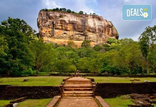 През февруари или март пътувайте до Шри Ланка! 7 нощувки със закуски и вечери, самолетен билет, трансфери, посещение на водопадите Клеър, градини за подправки, резерват за слонове и още! - Снимка 4