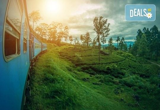 През февруари или март пътувайте до Шри Ланка! 7 нощувки със закуски и вечери, самолетен билет, трансфери, посещение на водопадите Клеър, градини за подправки, резерват за слонове и още! - Снимка 9