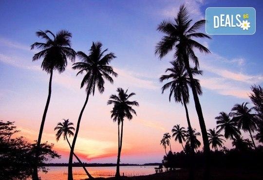 През февруари или март пътувайте до Шри Ланка! 7 нощувки със закуски и вечери, самолетен билет, трансфери, посещение на водопадите Клеър, градини за подправки, резерват за слонове и още! - Снимка 2