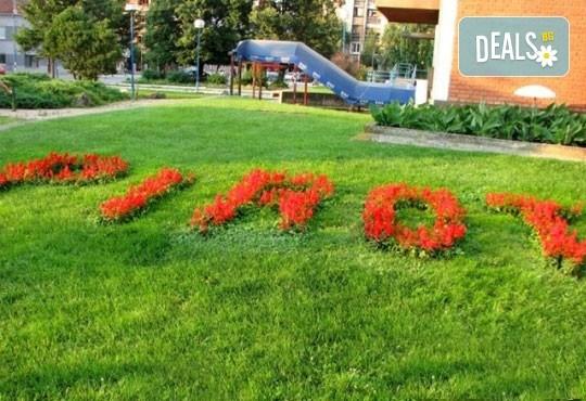 На купон по сръбски за Студентския празник: 1 нощувка със закуска и Празнична вечеря в хотел Алма 2*, Пирот, транспорт и екскурзовод - Снимка 3