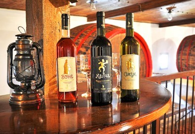 Уикенд екскурзия до Ниш и винарна Малча през декември с Глобус Турс! 1 нощувка със закуска и вечеря, транспорт и дегустация местни вина и сирена - Снимка
