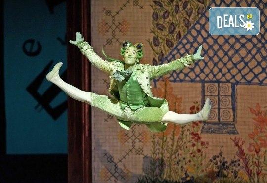 Ексклузивно в Кино Арена! Алиса в страната на чудесата - балетен спектакъл на Кристофър Уилдън, на 02, 03 и 05.12. в киносалоните в София! - Снимка 7