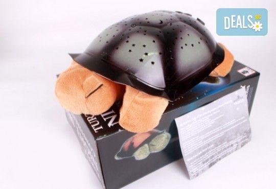 Любима играчка за лека нощ! Музикална детска нощна лампа костенурка от Магнифико! - Снимка 1