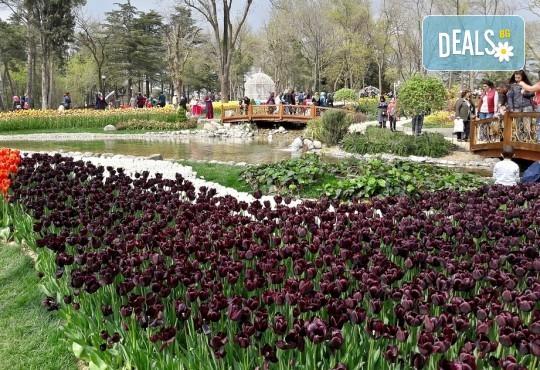 Вижте приказния Фестивал на лалето в Истанбул през пролетта! 2 нощувки със закуски, транспорт, екскурзовод и посещение на църквата Първо число - Снимка 3