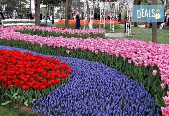Вижте приказния Фестивал на лалето в Истанбул през пролетта! 2 нощувки със закуски, транспорт, екскурзовод и посещение на църквата Първо число - Снимка 2