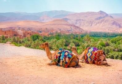 Ранни записвания за Великден в Мароко! Самолетен билет, летищни такси, трансфери, 5 нощувки със закуски и вечери в хотели 4*, туристическата програма