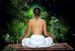 150 минути Аюрведичен микс! Абянга масаж на цяло тяло, Hot Stone терапия и козметичен масаж на лице, шия и деколте с аюрведична козметика в център GreenHealth - Снимка