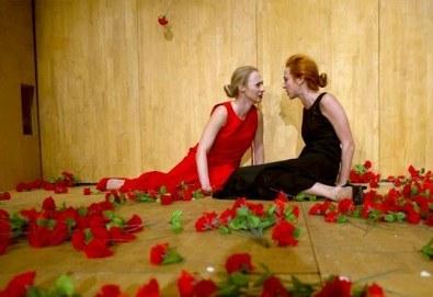 Пиеса за любовта и живота! Гледайте ''Лив Щайн'' в МГТ ''Зад канала'' на 28-ми януари (неделя) - Снимка