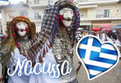 На карнавал в Науса, Гърция, през февруари! 1 нощувка със закуска и вечеря, транспорт, екскурзовод и посещение на Вергина и Солун - Снимка
