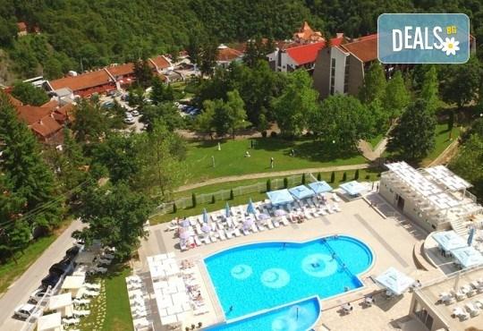 СПА уикенд за 3-ти март в Radan Hotel 3*, Пролом баня, Сърбия: 2 нощувки със закуски, обяди и вечери, ползване на басейн, транспорт, посещение на Ниш и Дяволския град - Снимка 1