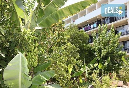 Мини почивка в Пафос, Кипър, с Ривиера Тур! Самолетен билет, 3 нощувки със закуски в хотел 3*, водач и възможност за посещение на Ларнака и Никозия - Снимка 9