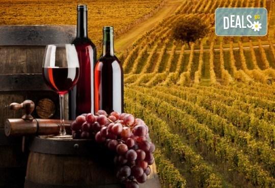 Панаир на виното на 03.02. в с. Илинденци: транспорт и екскурзовод
