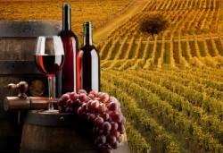 Посетете панаира на виното в с. Илинденци, посветен на сорта грозде Керацуда! Транспорт, екскурзовод и посещение на арт център Илинденци - Снимка