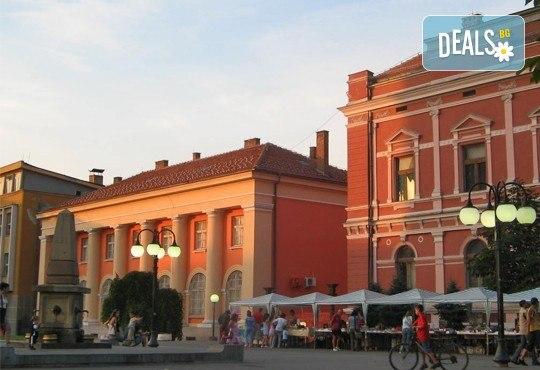 Великден в Etno Centar Balasevic 3*, Сърбия! 2 нощувки със закуски и вечери с жива музика и напитки, транспорт, ползване на басейн, посещение на Ниш, археологическия комплекс Феликс Ромулиана и Зайчар - Снимка 14
