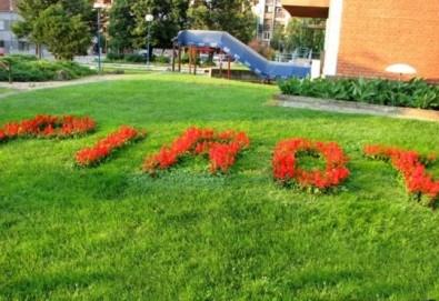 Екскурзия за 1 ден до Пирот, Суковския и Погановския манастир - транспорт и екскурзовод от Еко Тур! - Снимка