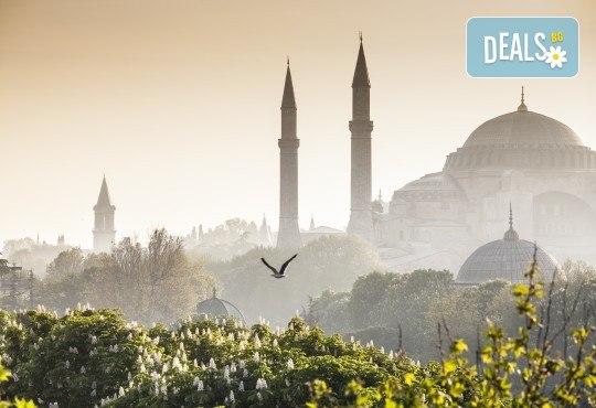 На фестивала на лалето в Истанбул през април! 2 нощувки със закуски, транспорт, екскурзовод и посещение на Одрин - Снимка 5