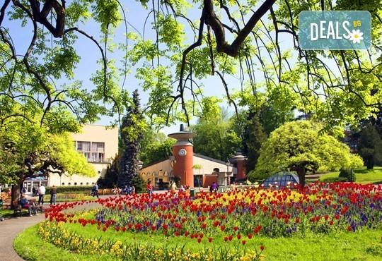 За Гергьовден в кралския град Кралево, Сърбия! 2 нощувки със закуски и 1 вечеря, транспорт, програма в Лазарев град, манастира Жича и Врънячка баня - Снимка 1