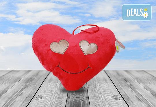 Изненадайте своята половинка на празника! Подарете плюшена възглавничка сърце или калинка и ефектен фолио балон с хелий, от Парти магазин Рая! - Снимка 7