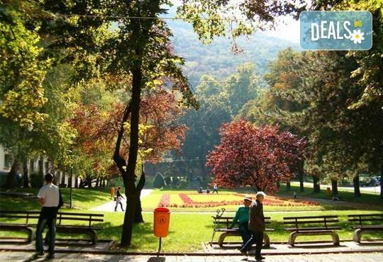 През март/май за 1 ден до Пирот, Ниш и Нишка баня: транспорт и екскурзовод
