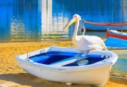 Еднодневна екскурзия до пещерата Алистрати и Керкини – езерото на пеликаните и фламингото! Транспорт и екскурзовод от Еко Тур! - Снимка