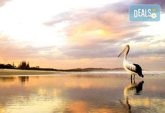 Еднодневна екскурзия до пещерата Алистрати и Керкини – езерото на пеликаните и фламингото! Транспорт и екскурзовод от Еко Тур! - Снимка 3