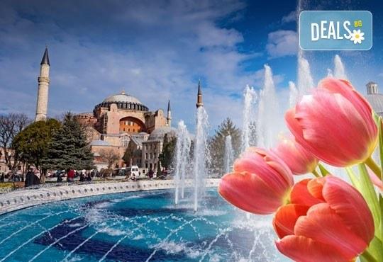За Фестивала на лалето в Истанбул с Дениз Травел! 2 нощувки със закуски в хотел 3*, транспорт и програма - Снимка 1