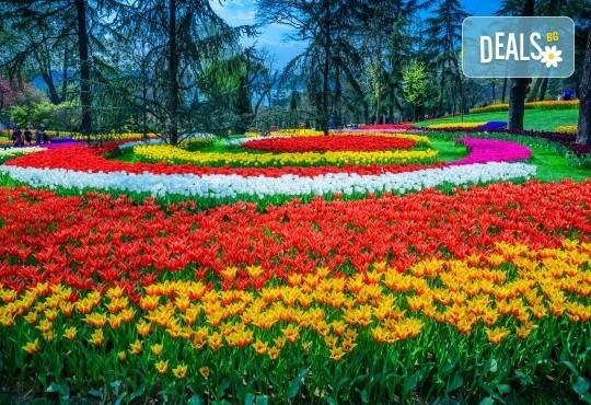 За Цветница се потопете в магията на Фестивала на лалето в Истанбул! 2 нощувки със закуски в хотел 3*, транспорт и програма - Снимка 1
