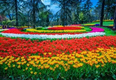 За Цветница се потопете в магията на Фестивала на лалето в Истанбул! 2 нощувки със закуски в хотел 3*, транспорт и програма - Снимка