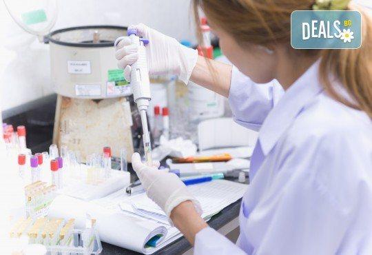 Пакет Паразитология - серологично изследване за ехинокок, токсоплазмоза Ig G и токсоплазмоза Ig M в Лаборатории Микробиолаб! - Снимка 1