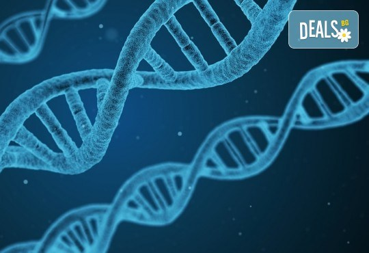 Генетичен анализ на атопичен дерматит в Геномен център и лаборатория Геника! - Снимка 2