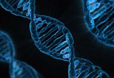 ДНК тестове за предразположеност към ендометриоза в Геномен център и лаборатория Геника! - Снимка